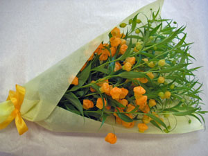 サンダーソニアM花束